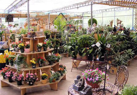 Why Pick Radiant Heating Systems for Your Garden Center Outlet?